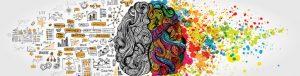 تصویر مغز انسان